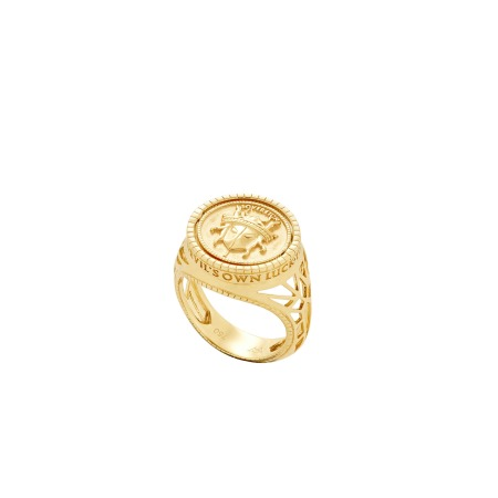 Flipside Sovereign Pinky Ring | Mens | Stephen Webster