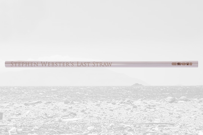 The Last Straw you will ever need with Stephen Webster's Sterling Silver straw.